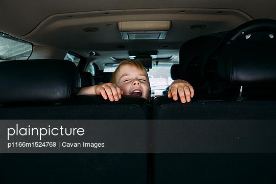 p1166m1524769 von Cavan Images