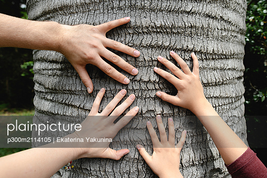 Four hands touching a tree trunk - p300m2114105 von Ekaterina Yakunina