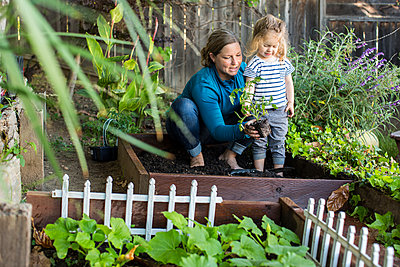 Caucasian mother teaching gardening to daughter - p555m1503985 by Adam Hester