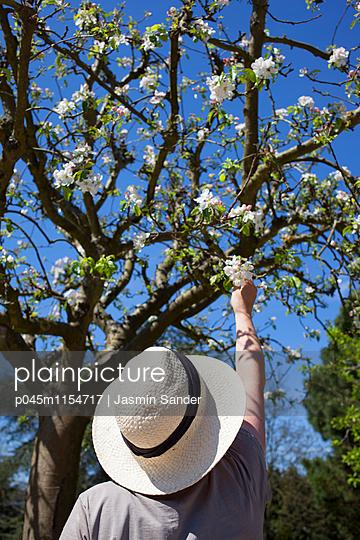 Gärtner im Frühling - p045m1154717 von Jasmin Sander