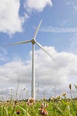 Windrad auf einer Kleewiese I - p570m816656 von Elke Röbken