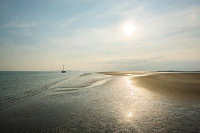 sunny evening on a sandbank - p1132m1486460 by Mischa Keijser