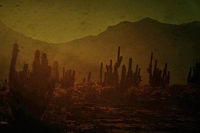 Desert - p148m1034776 by Axel Biewer