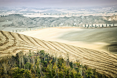 Cultured landscape of Tuscany - p416m1056907 by goZooma