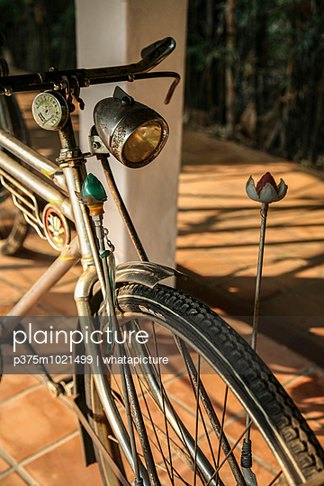 Old Bicycle - p375m1021499 by whatapicture