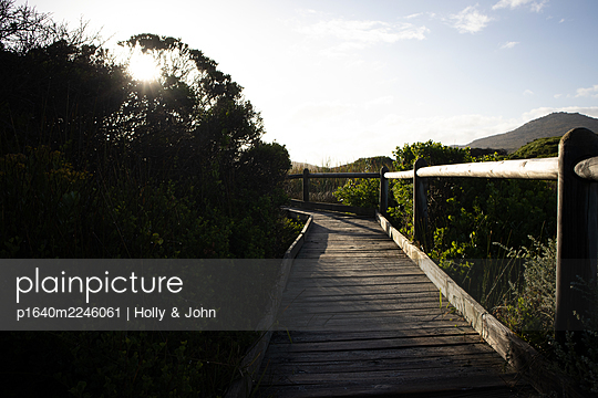 South Africa, Boardwalk in the landscape - p1640m2246061 by Holly & John