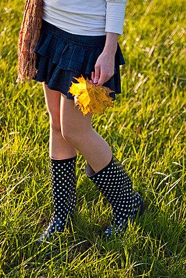 Herbst - p2200764 von Kai Jabs