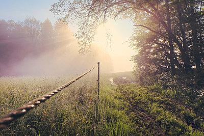 Germany, North Rhine-Westphalia, Morning mist and sunrise - p300m950624f by noonland