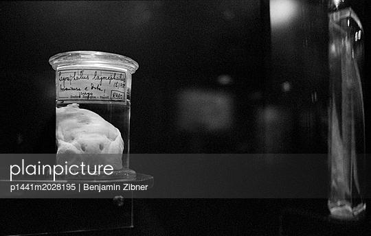 Konserviert - p1441m2028195 von Benjamin Zibner