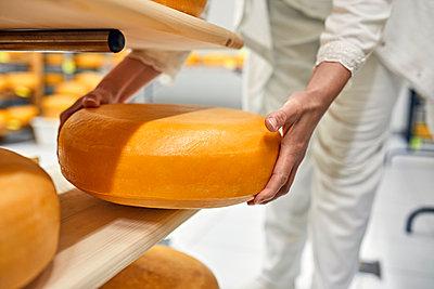 Cheese factory, female worker turning cheese wheel - p300m2199646 by Zeljko Dangubic