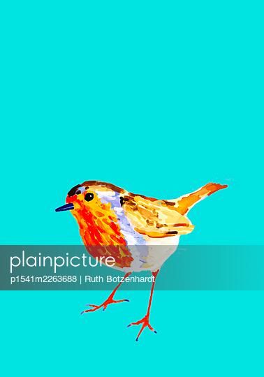 Illustration, Bird - p1541m2263688 by Ruth Botzenhardt