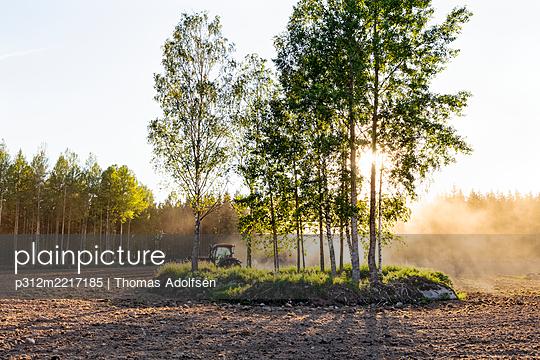 p312m2217185 von Thomas Adolfsén