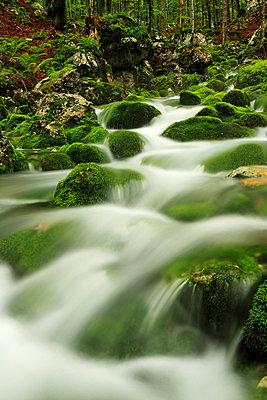 Fluss - p179m932396 von Roland Schneider