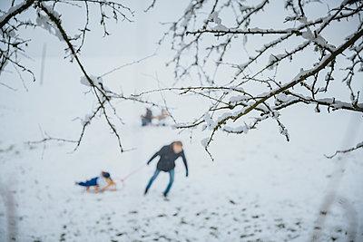 Snowy brances in focus with father pulling son in sledge trough snow, Blankenheim, NRW, Germany - p300m2266926 von Mareen Fischinger