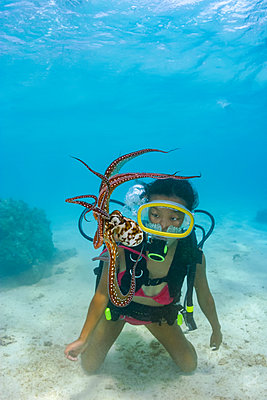 Cautious and curious at the same time, a diver gets a good look at a day octopus (Octopus cyanea); Rarotonga, Cook Islands - p442m2154171 by Dave Fleetham