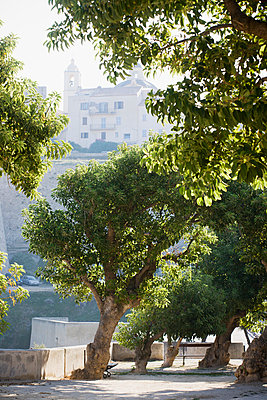Park overlooking the old parts of Calvi, Corsica - p575m873291 by Lina Karna Kippel