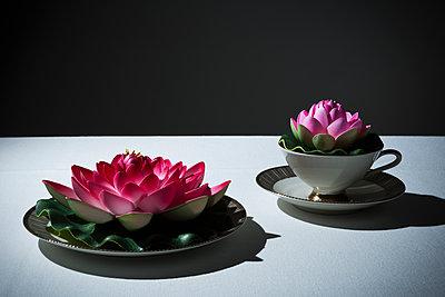 Seerosen auf Kaffeeservice - p1149m1486637 von Yvonne Röder