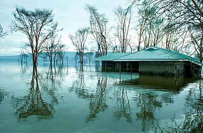 Nakuru lake - p533m899161 by Böhm Monika