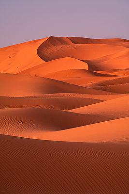 Sand dunes, Sahara Desert, Morocco, North Africa, Africa - p871m2209260 by Ed Rhodes