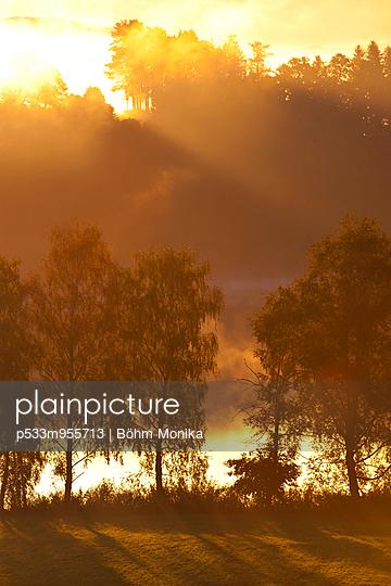 Nebel am Morgen - p533m955713 von Böhm Monika