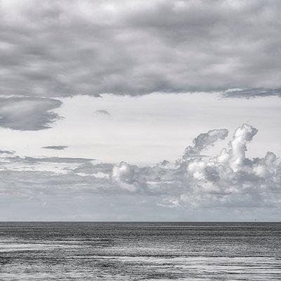 Storm Horizon - p1154m1162672 by Tom Hogan