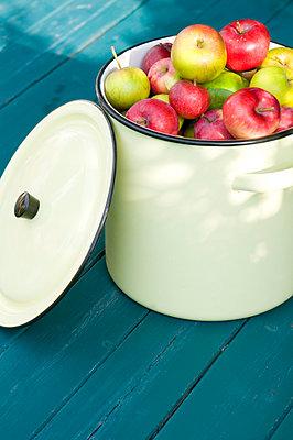 Apples - p116m965674 by Gianna Schade