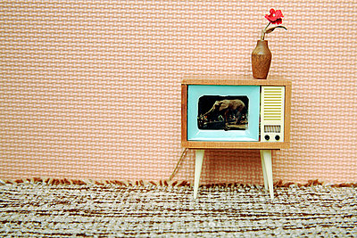 Miniature television in a doll's house - p3370052 by Sylvia Ballhause