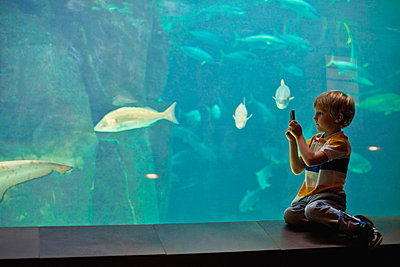 Boy taking pictures of fish in aquarium - p42917177f by Hybrid Images