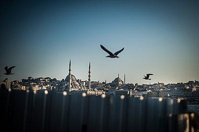 Suleymaniye Mosque - p1007m1134875 by Tilby Vattard