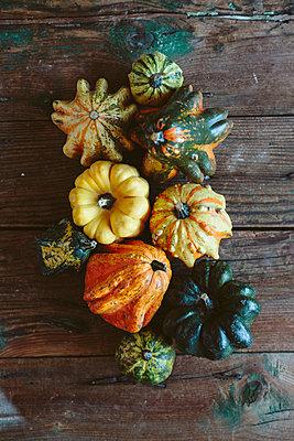 Various Ornamental pumpkins on wood - p300m1581709 von Giorgio Fochesato