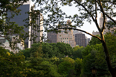New York City, Central Park - p842m1031000 by Renée Del Missier