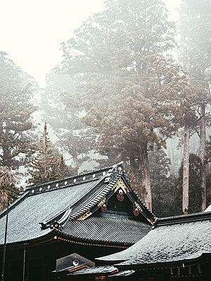 Roof construction of Shinto temple, Japan - p961m2253627 by Mario Monaco