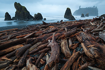 Sea stacks and piles of driftwood at Ruby Beach, Olympic National Park, Washington. - p1424m1501713 by Ethan Welty
