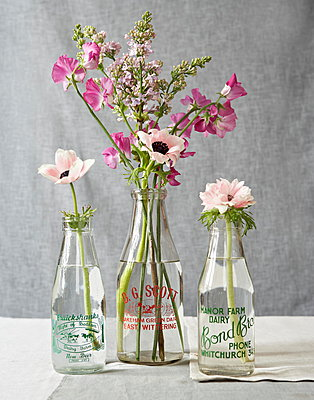 Sweet peas and pinks in vintage bottles - p349m896279 by Jon Day