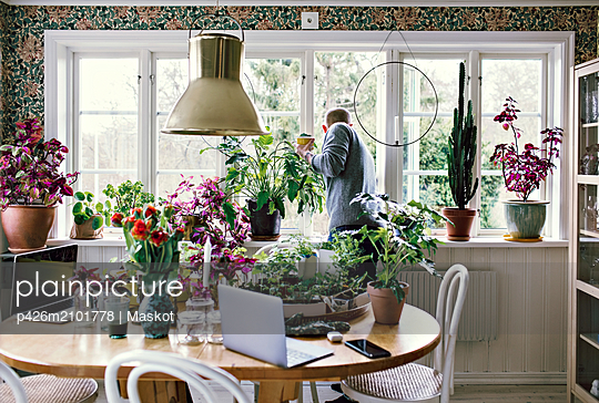 Man looking through window holding coffee cup by plants at home - p426m2101778 by Maskot