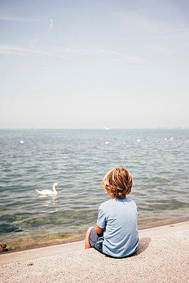 Rear view of boy sitting looking at swan on water, Bregenz, Vorarlberg, Austria - p429m1105778 by JFCreatives