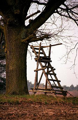 Hochsitz am Baum - p0890009 von Gerd Olma