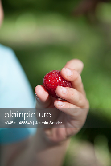 p045m1488349 by Jasmin Sander