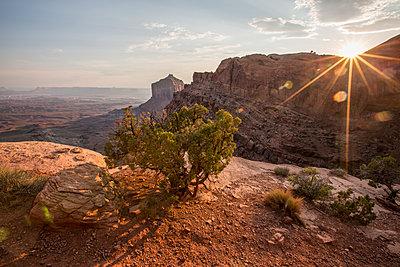 Sunset in Canyonlands National Park, Utah. - p1166m2138172 by Cavan Images