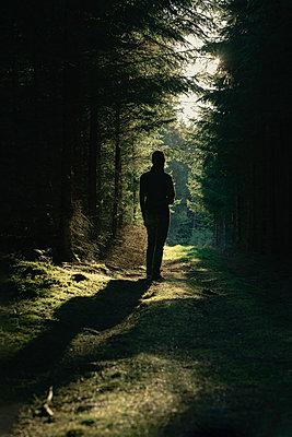 Mann im Wald - p1398m2204077 von Tabitha Genoveva Harter