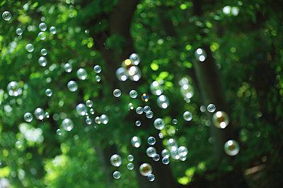 Soap bubbles and grass - p307m1106009f by Yusuke Nakanishi