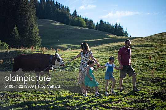 France, Family and cow on pasture - p1007m2219969 by Tilby Vattard