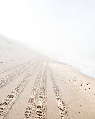 Tiretracks fade off into the distance on an isolated beach - p1166m2163074 by Cavan Images