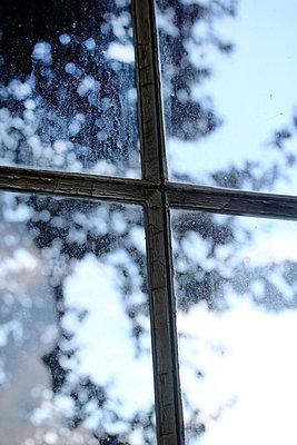 Sprossenfenster    - p450m1183263 von Hanka Steidle