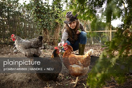 Mädchen füttert Hühner - p1348m1480869 von HANDKE + NEU