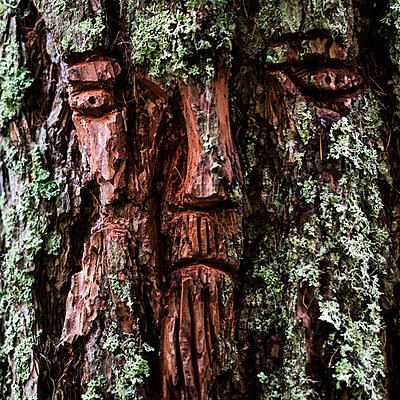 Gesicht - p280m2064892 von victor s. brigola