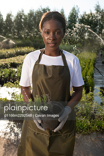 Black gardener with potted rosemary - p1166m2292548 by Cavan Images