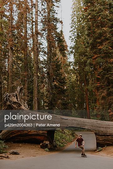 p429m2004363 von Peter Amend
