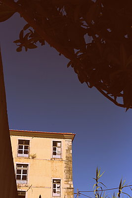 Old house - p1063m1492496 by Ekaterina Vasilyeva