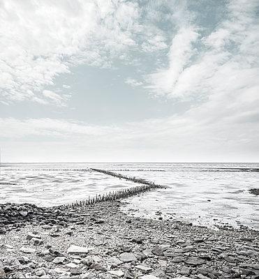 Lahnung zum Küstenschutz an der Nordsee - p1162m2278610 von Ralf Wilken